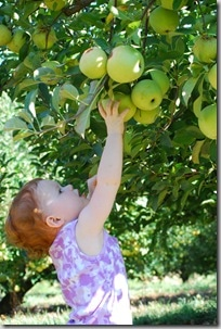 picking her own apple