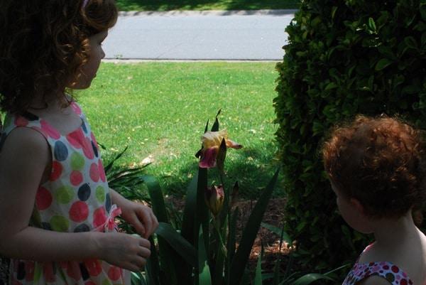 Serious girls Spring