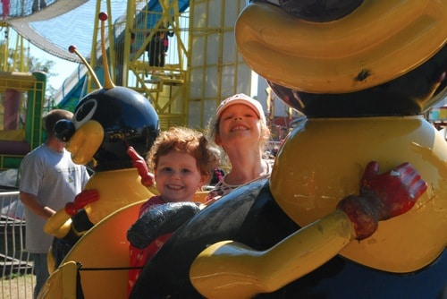 bumble bee at the fair