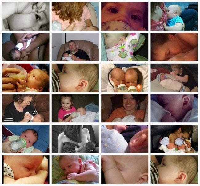 Feeding collage