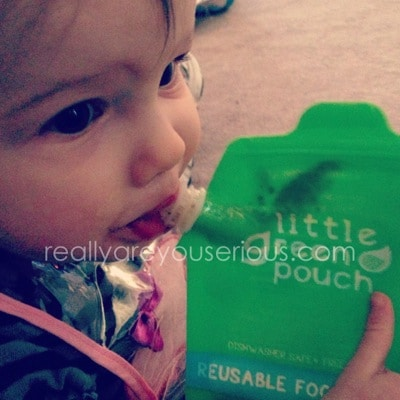 Little Green Pouch Review