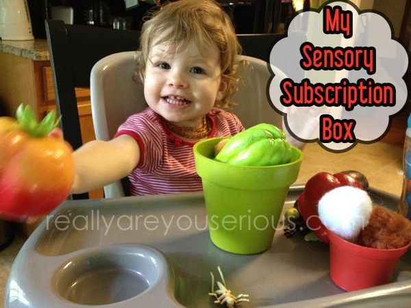 My Sensory Box Review