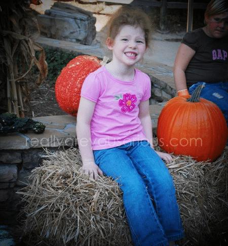 Stone Mountain Park's Annual Pumpkin Festival