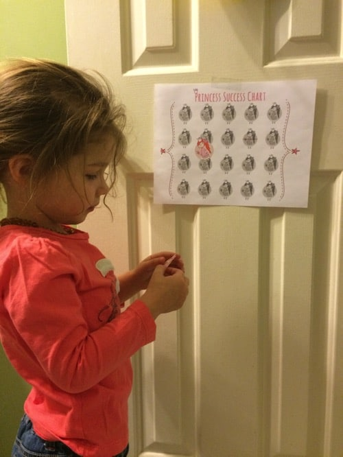 potty success chart and princess success chart