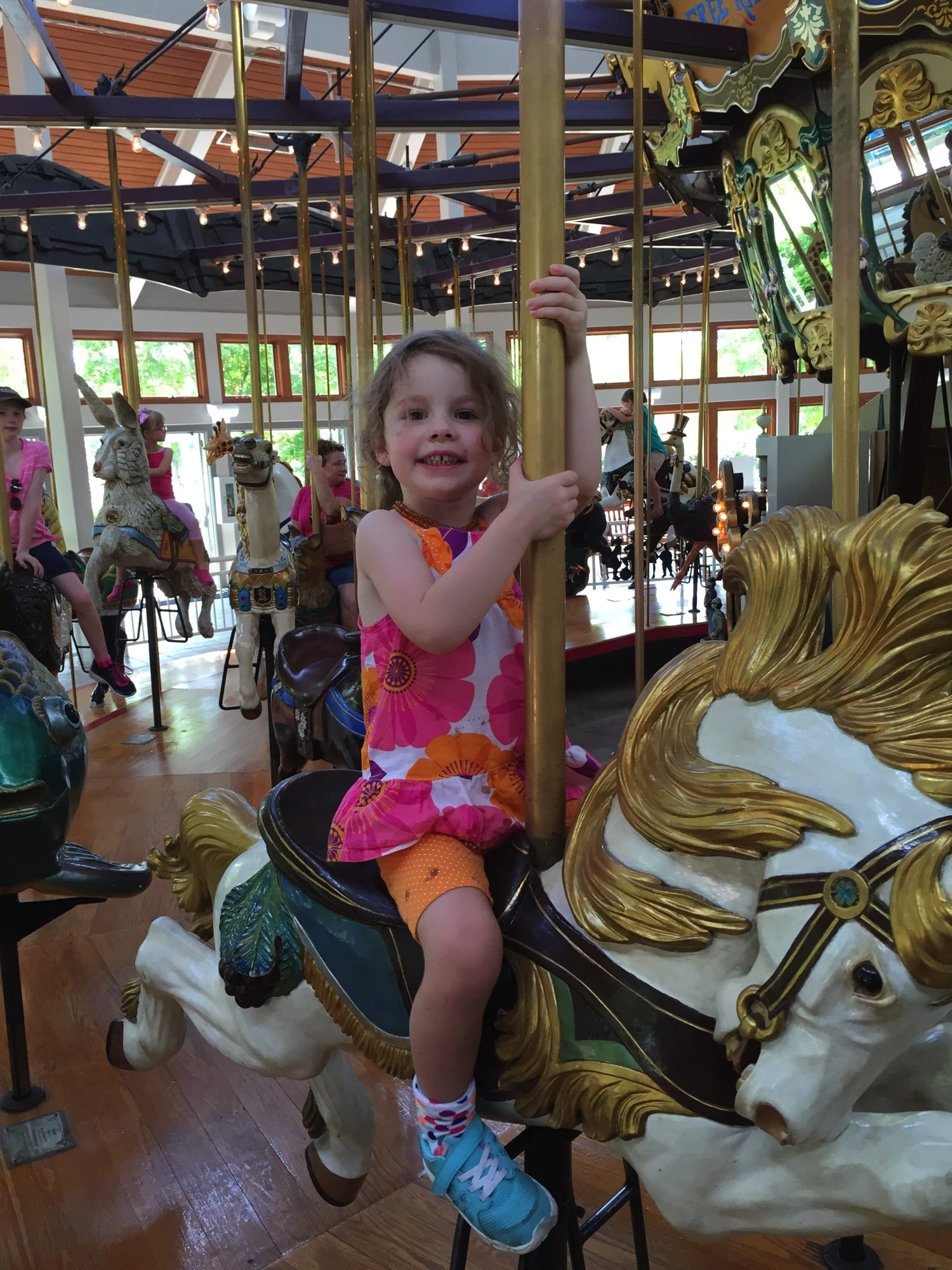 riding carousels