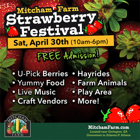 Tips for visiting a you pick 'em farm just in time for the Strawberry Festival at Mitcham Farm