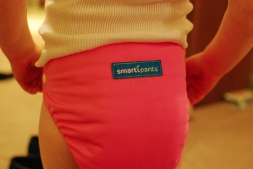 smartipants review