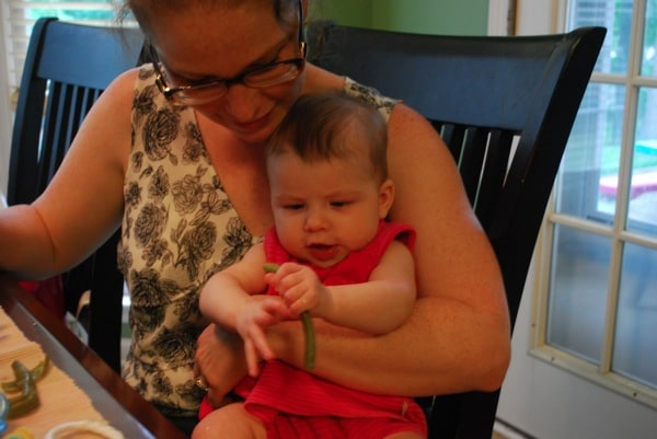 baby led weaning green bean