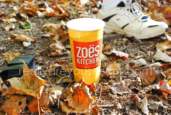 zoes kitchen catering for kids and adult birthday party