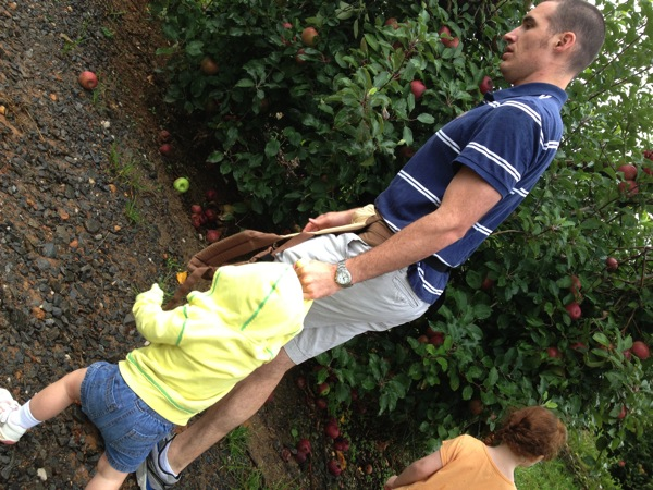 Apple Picking in Ellijay