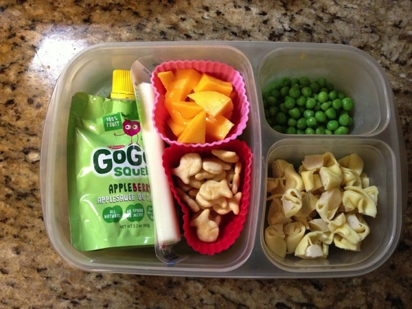 Bento Lunch Boxes for Toddlers/Preschool