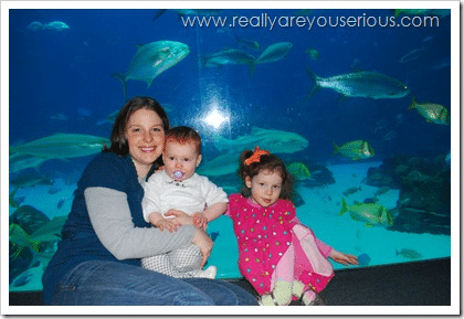 Very first mommy and me monday at the aquarium