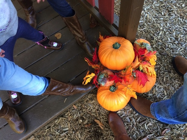 Family at the Pumpkin Patch with Rack Room Shoes Boots for everybody