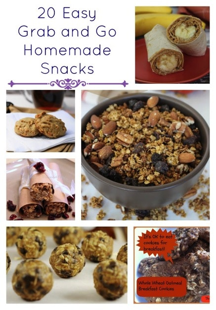 20 Easy Grab and Go Homemade Snacks