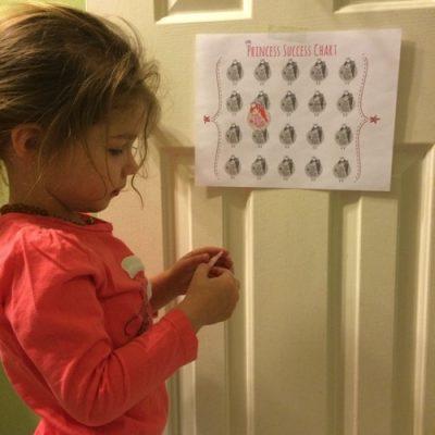 Princess Success Chart