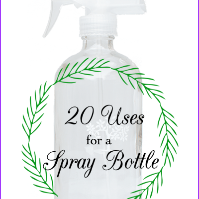 20 uses for a spray bottle