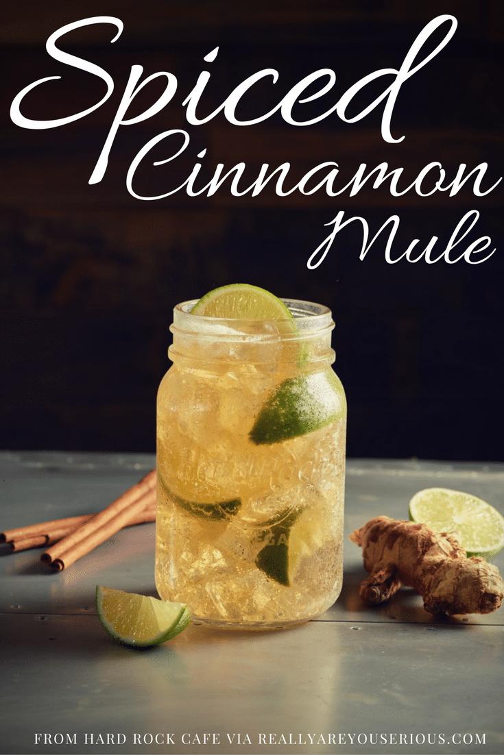 Spiced Cinnamon Mule in Mason Jar