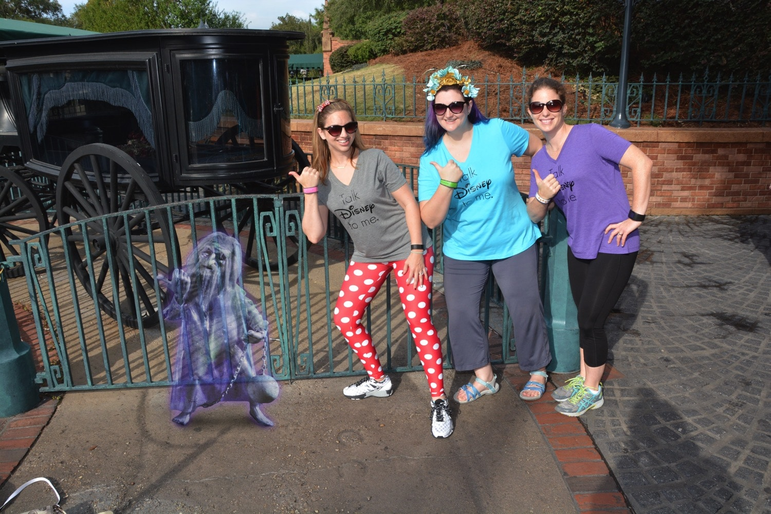 haunted mansion hitch hiker magic picture vip tour