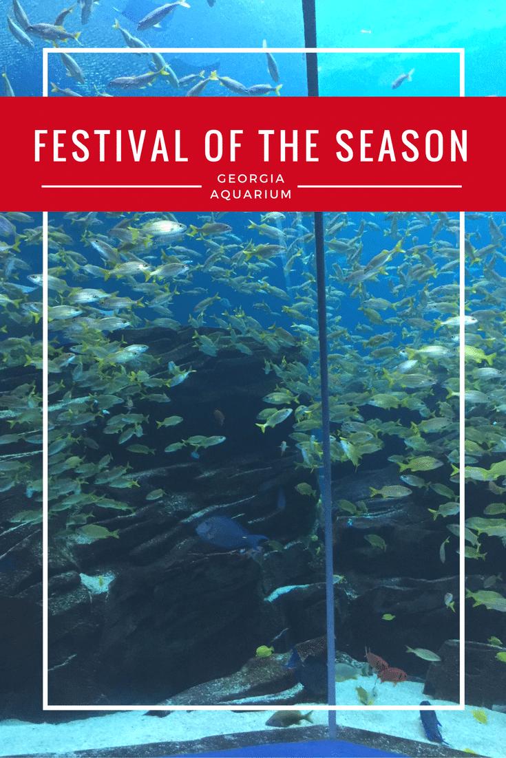 Festival of the SEAson
