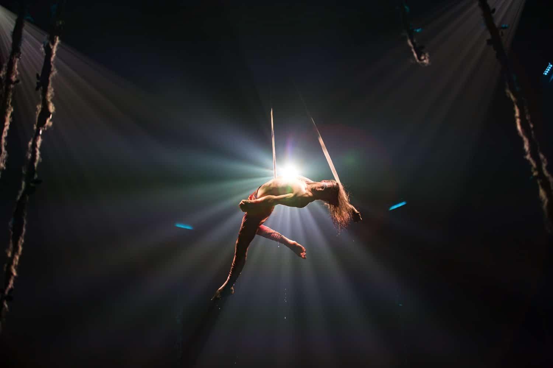 cirque du soleil luzia straps