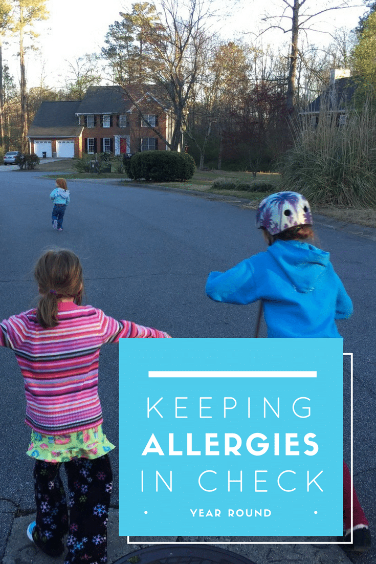 keeping allergies in check year round