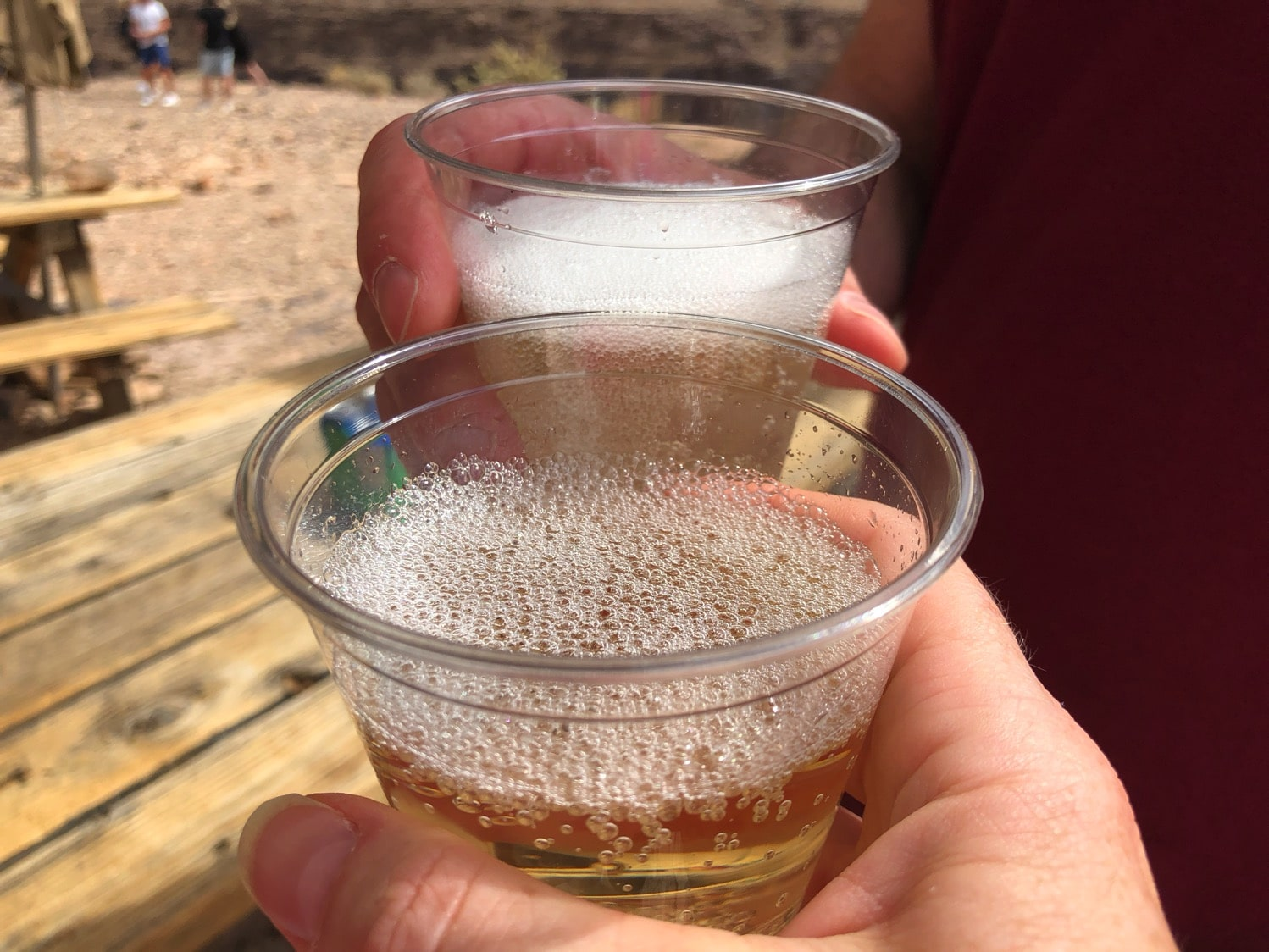 champagne toast inside the grand canyon