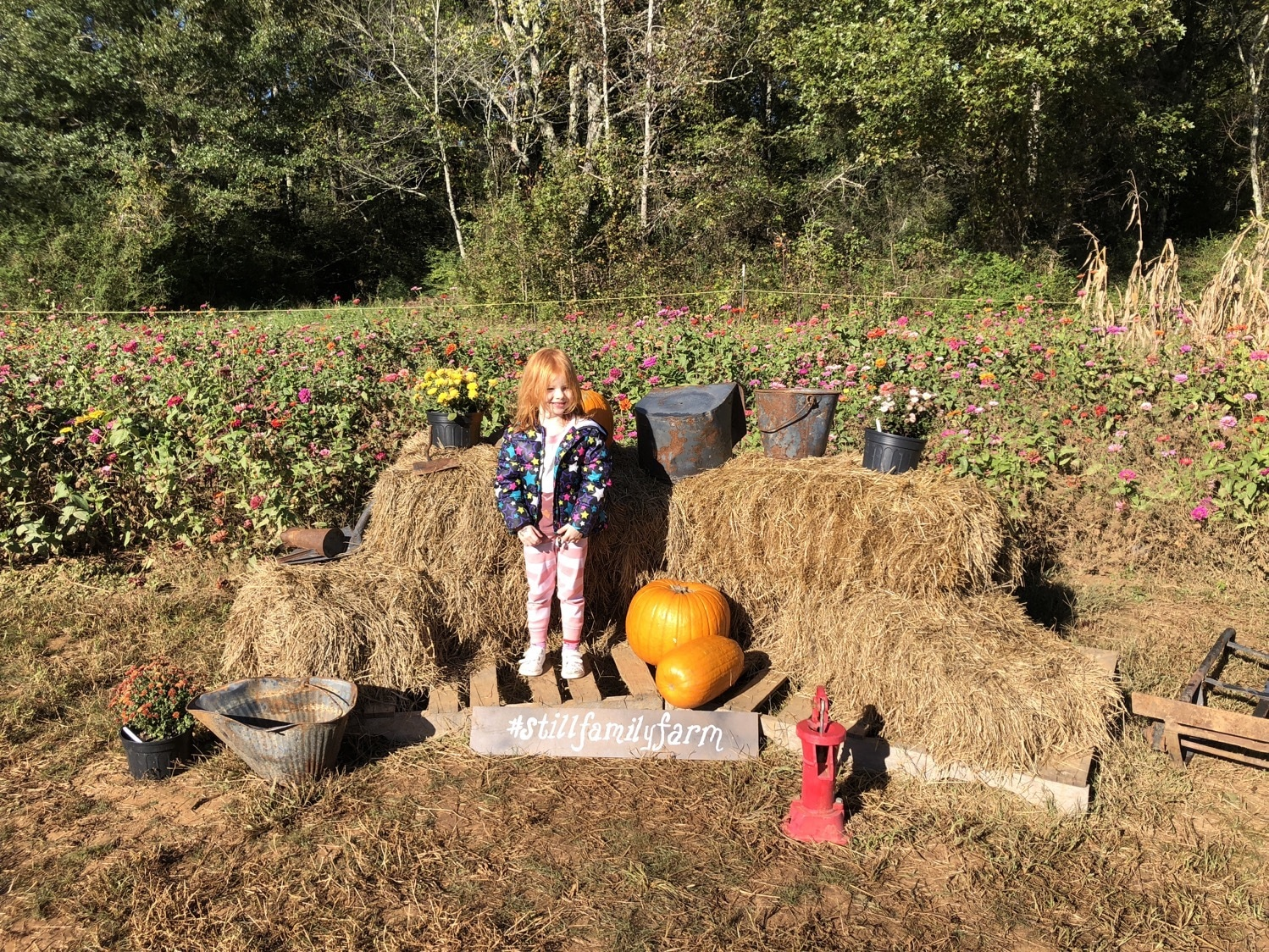last pumpkin patch visit mommy and me monday