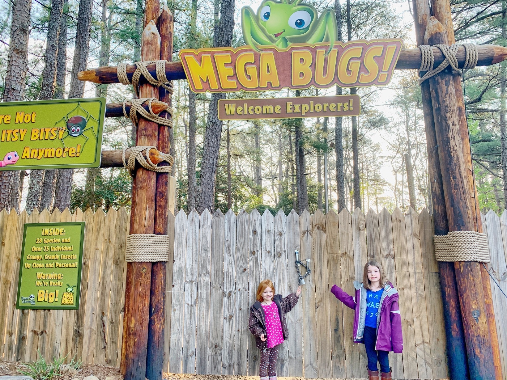 MEGA BUGS at Stone Mountain