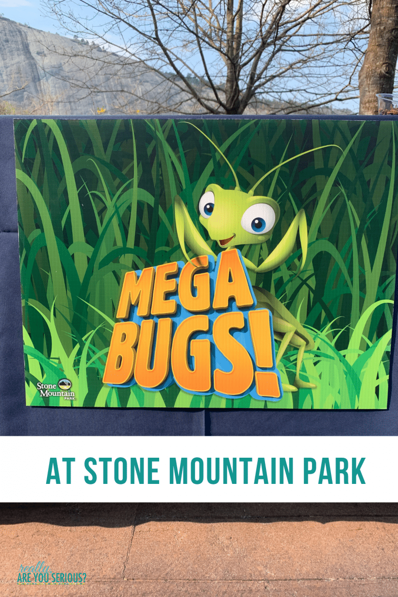 MEGABUGS at Stone Mountain Park