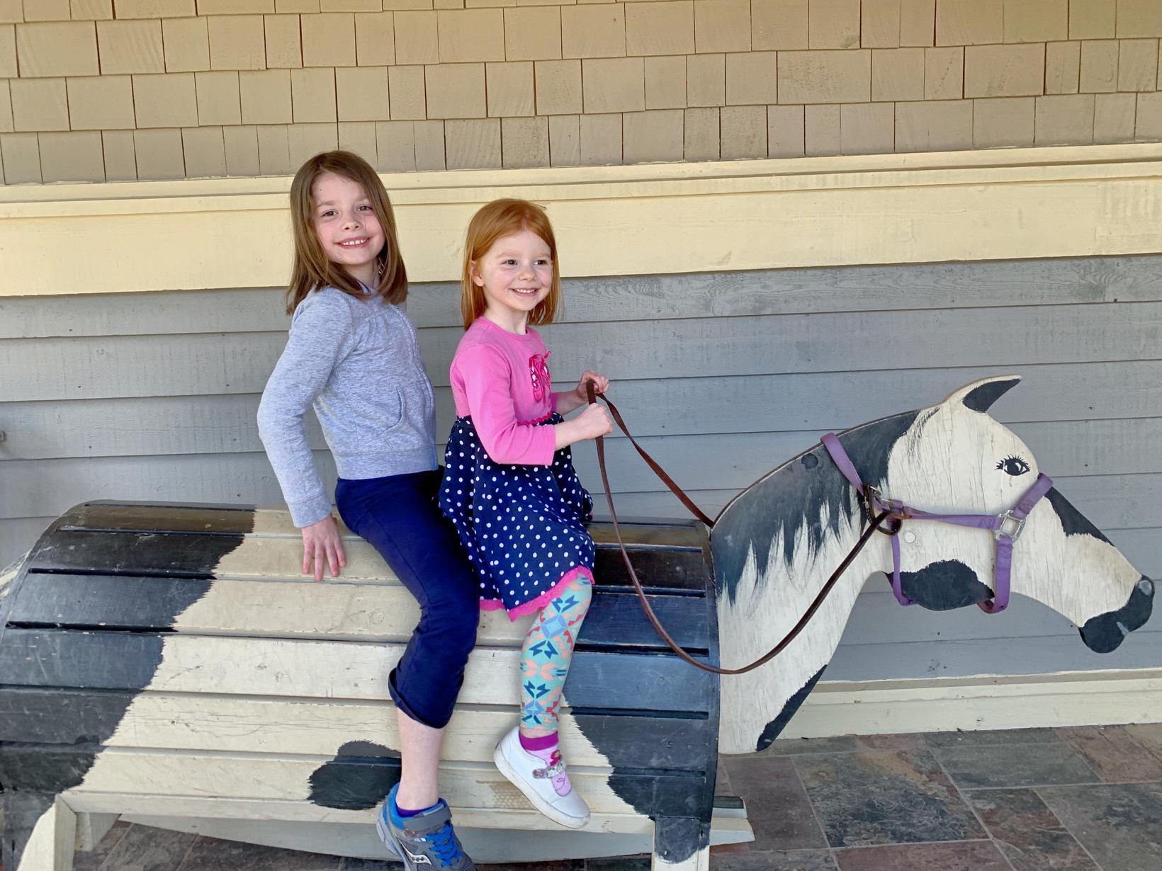 Barrel horses