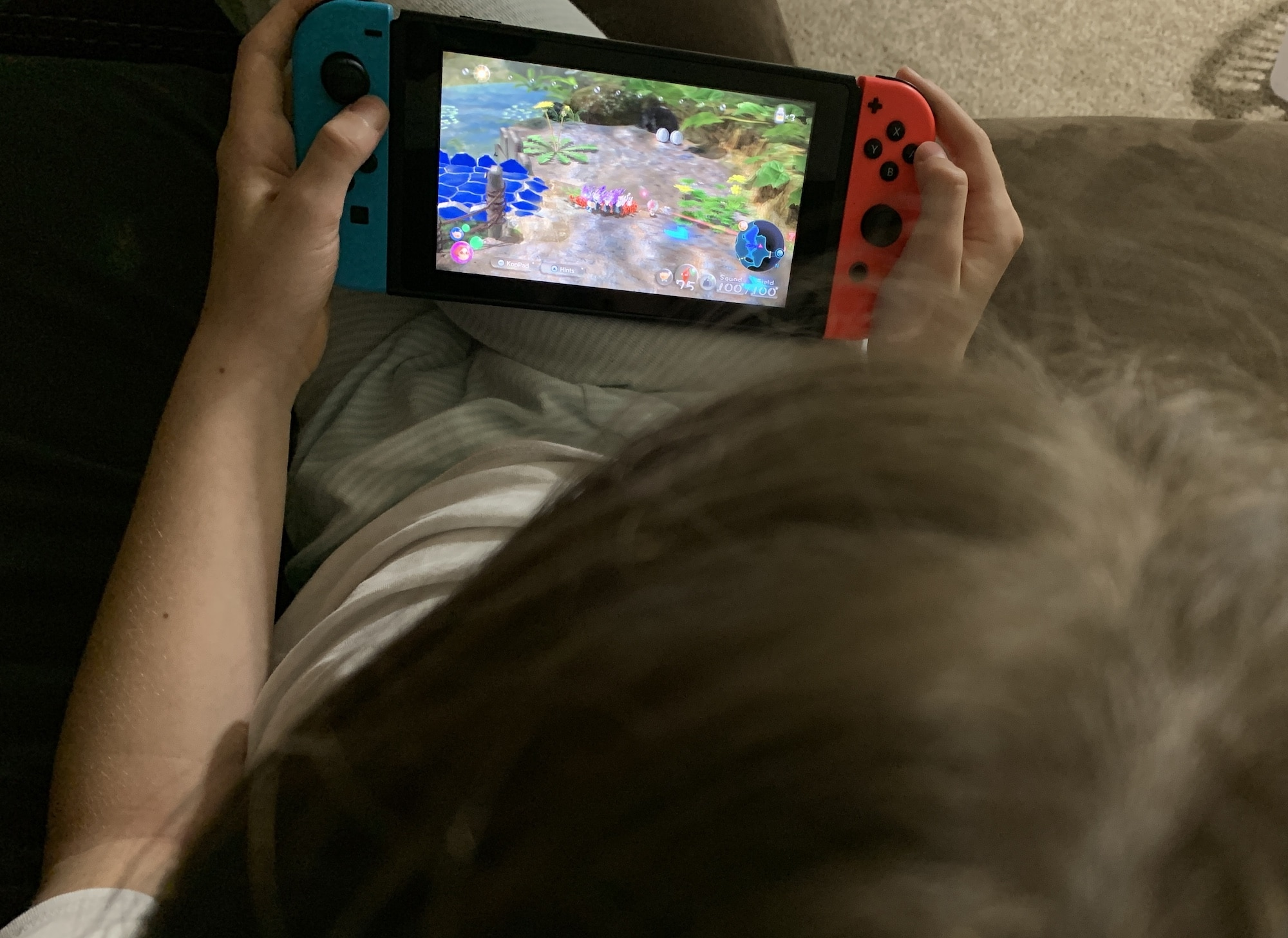 playing pikman on nintendo swith handheld