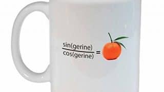12. Tangerine Funny Math Coffee or Tea mug