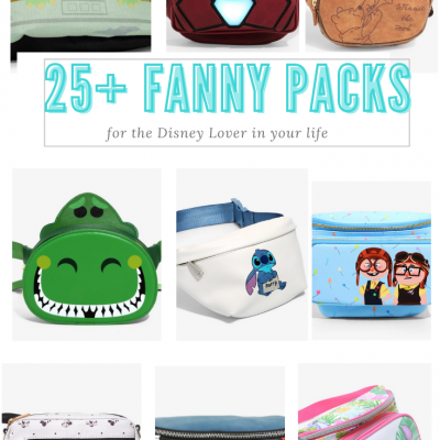 25 Fanny packs for disney lovers