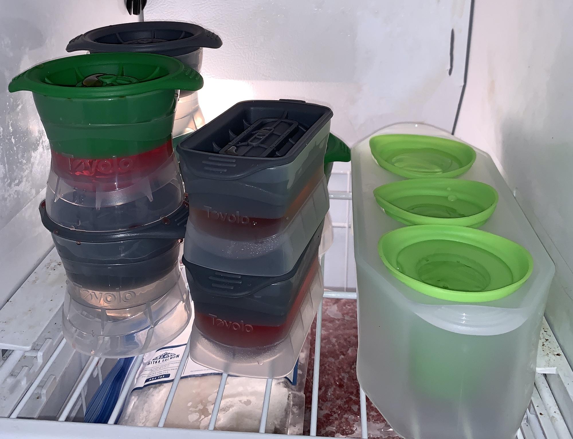 ice molds in freezer